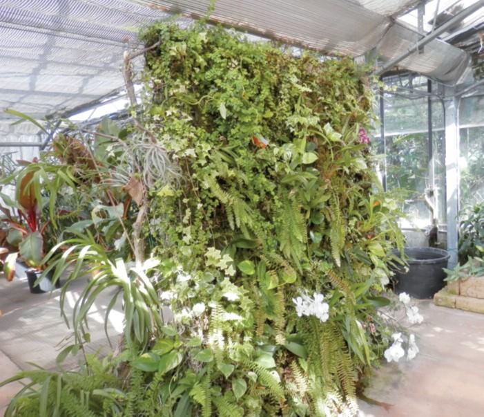 2016-04 Da vedere Villa Lonati e il Museo Botanico 1