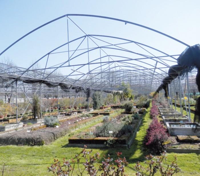 2016-04 Da vedere Villa Lonati e il Museo Botanico 5
