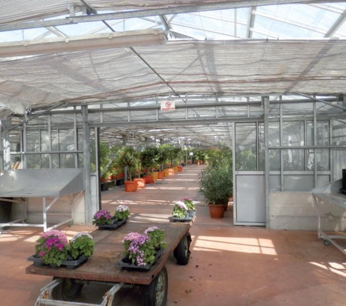 2016-04 Da vedere Villa Lonati e il Museo Botanico 6