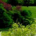 Flora e fauna del Parco Nord: Visti e fotografati