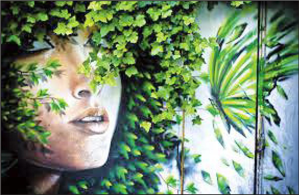 """In visita ai murales con """"Zona Nove"""""""