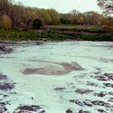 Seveso: migliora la qualità delle acque ma la bonifica resta lontana